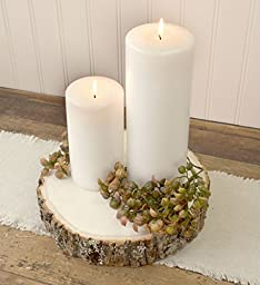 Round Basswood Tree Slices in Two Sizes, 9 to 11 inches and 12 to 14 inches, Kiln Dried Real Wood Slabs, Natural Wood Slices, Rustic Wedding Decorations and Home Decor, (3 Pieces)