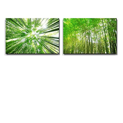 Green Bamboo Forest and Bamboo Grove Viewed from the Ground Wall Decor ation x 2 Panels