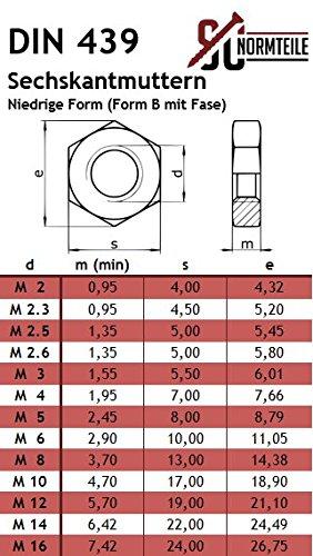 Schlossschrauben - Vollgewinde 5 St/ück Flachrundschrauben mit Sechskantmuttern Edelstahl A2 - SC603 // SC439 DIN 603 // DIN 439 V2A niedrige Form - M8x140 -