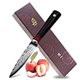 Tuo Cutlery Paring Knife 3.5 inch - Japanese AUS-10D Damascus Steel - Peeling Fruit Vegetable Knife with Ergonomic G10 Handle - RING-D Series