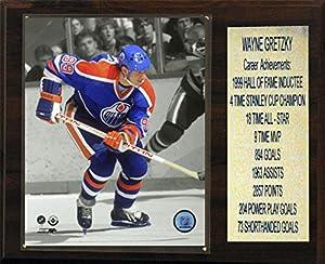 "NHL Edmonton Oilers Wayne Gretzky Stat Plaque, 12""x15"""