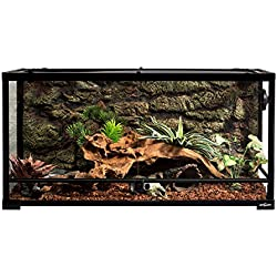 "REPTI ZOO Reptile Glass Terrarium Tank Double Hinge Door with Screen Ventilation Reptile Terrarium 36"" x 18"" x 18""(Knock-Down)"