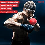 LIQUIDATING STOCK! Boxing Reflex Ball– BONUS