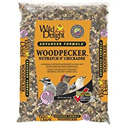 Wild Delight 364050 Advanced Formula Woodpecker Nuthatch N Chickadee Food, 5 Pounds