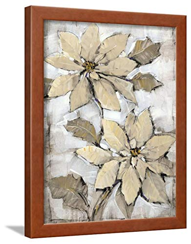 ArtEdge Poinsettia Study II by Tim O'Toole, Brown Wall Art