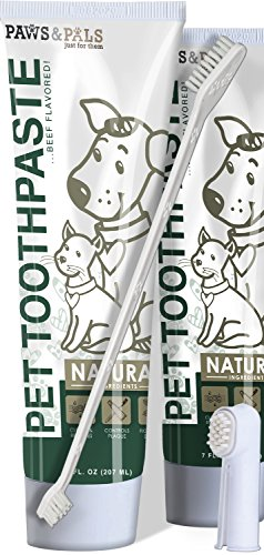 Paws Pals Enzymatic Toothpaste Toothbrush product image