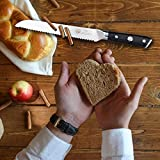 Kessaku Bread Knife - Dynasty Series - German HC