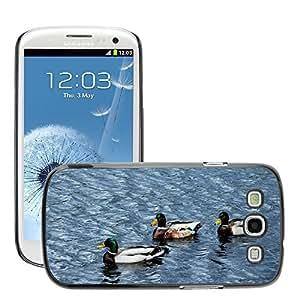 Just Phone Cover Etui Housse Coque de Protection Cover Rigide pour // M00138237 Patos Pájaro acuático Animal Pájaro // Samsung Galaxy S3 S III SIII i9300
