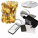 Nbw 300 LEDs Curtain Light with Remote, Fairy String Lights with Hook, Full Waterproof Christmas led Window Curtain for Indoor and Outdoor, RF Controller Safe Low Voltage UL588 Listed