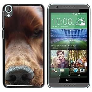 TopCaseStore / la caja del caucho duro de la cubierta de protección de la piel - Golden Retriever Nose Dog Canine - HTC Desire 820