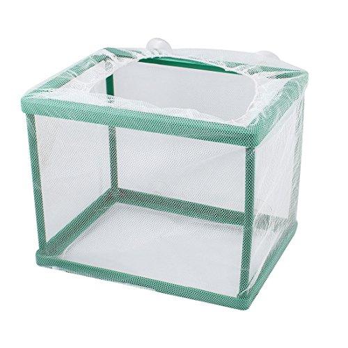 Guppy Breeder (uxcell Aquarium Fish Tank Breeding Breeder Fry Fishes Net Box Hatchery)
