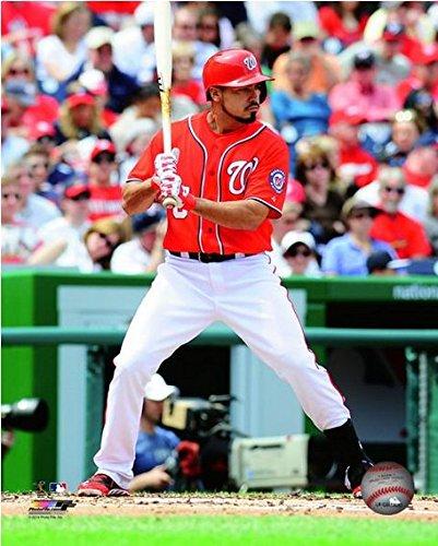 """Anthony Rendon Washington Nationals 2014 MLB Action Photo (Size: 8"""" x 10"""")"""