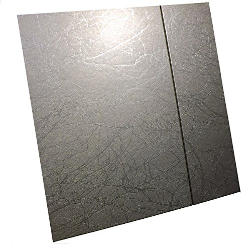 10 X 10'', Silver Artistic Painting Style, Self Adhesive Albums w/Magnetic Flap,10 Pages (20 Sides) by Showoff Albums