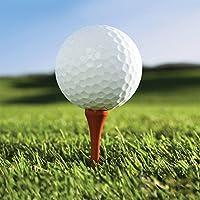 Golf Fanatic Beverage Napkins (16 ct)