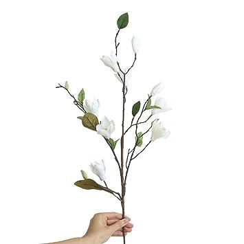 Sunshineboby Magnolia De Neuf Têtes Débarquant Des Fleurs