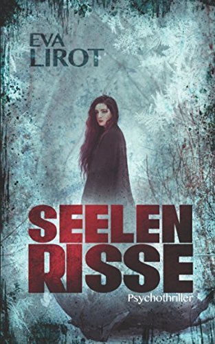 Seelenrisse (Jim Devcon-Serie, Band 8)