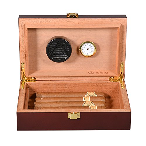 Volenx Cigar Humidor with Hygrometer and Humidifier, Front-Mount Clasp Lock, Holds 5-10 Cigars by volenx
