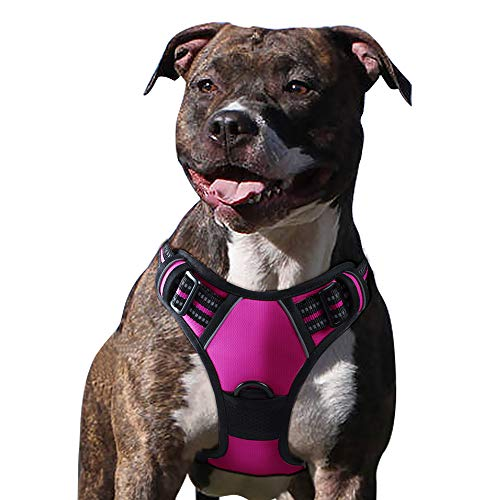 Eagloo Dog Harness No Pull, Walking Pet Harness with 2 Metal Rings & Handle Adjustable Reflective Breathable Oxford Soft Padded Easy Control Front Clip Vest Harness Outdoor for Medium Dogs Rose Red