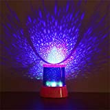 Chinaware USB Battery Dual-Use Star Lights Romantic Night Light Styling Table Lamp Holiday Lights Garden Decoration Lights Creative and Beautiful Lighting (Pink)