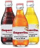 Chaparritas Vidrio Multisabor 255 ml | 24 piezas
