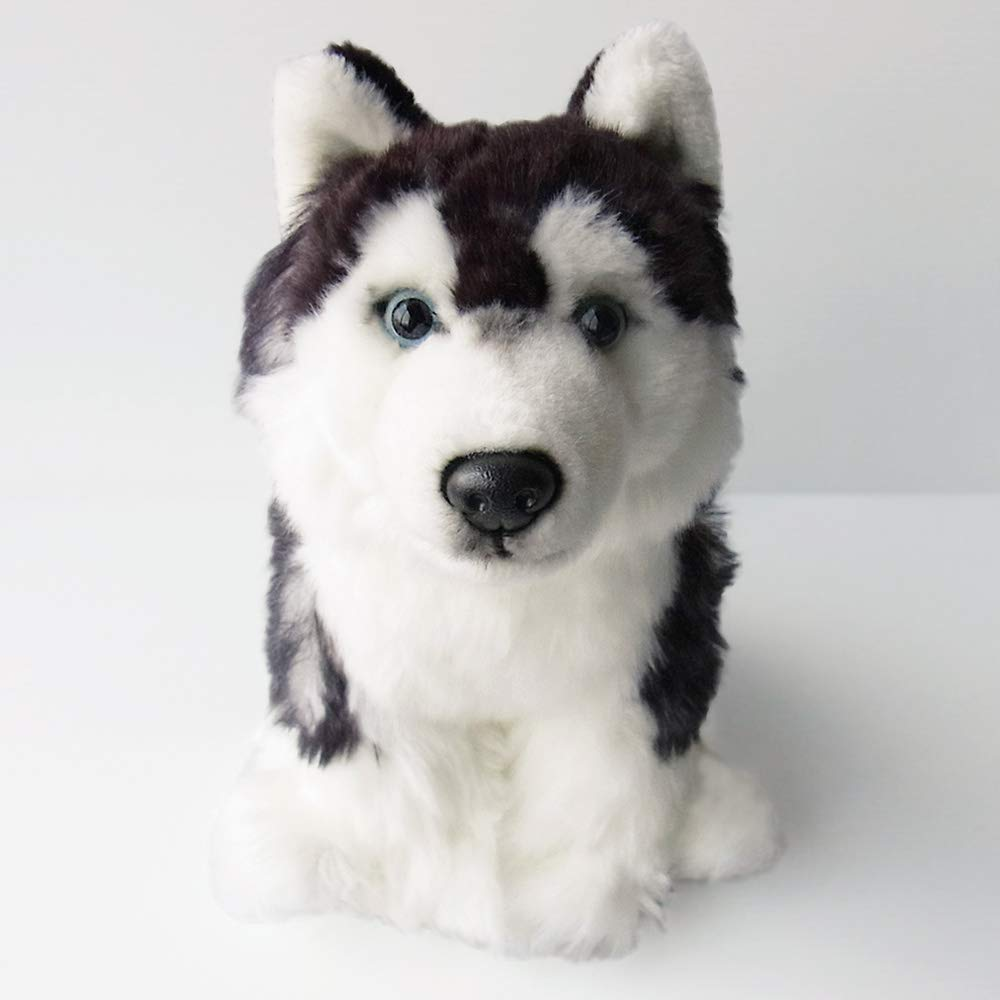 8d38a7776c SIBERIAN HUSKY SOFT AND CUDDLY TOY  Amazon.co.uk  Toys   Games