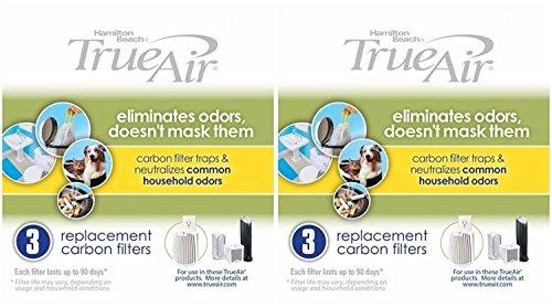 (Hamilton Beach 04230G True Air Replacement Filter, 6-Pack)