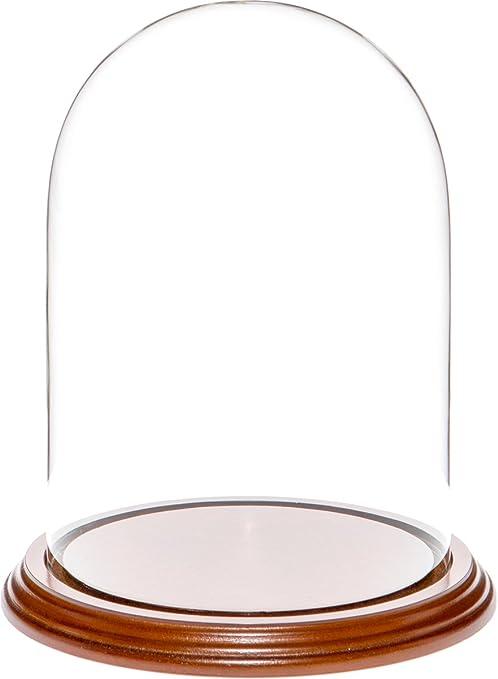 """Plymor 5.5/"""" x 8/"""" Glass Display Dome Cloche Walnut MDF Base"""