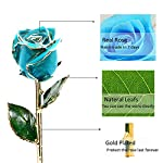 Icreer-Gold-Dipped-Blue-Rose-Flower-Gifts-for-AnniversaryBirthdayValentines-DayWeddingGift-for-HerMomWifeGirlfriendFree-Crystal-Stand