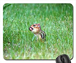 This Berry Taste Good Mouse Pad, Mousepad (Squirrels Mouse Pad, Watercolor style)