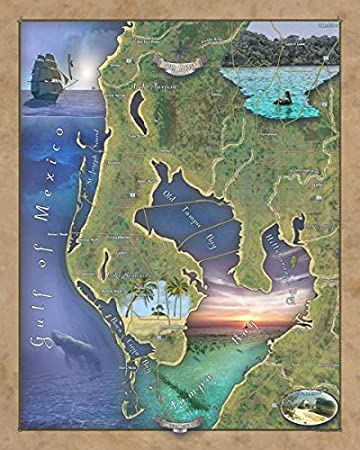 St Petersburg Florida Map.Amazon Com Sun Coast Florida St Petersburg Sun Coast Map Map St