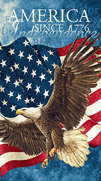 - Stars & Stripes American Eagle With Flag Panel 24 X 44 inches Northcott Cotton Fabric 39371-49