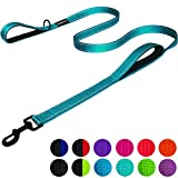 best 100 Feet Dog Leash