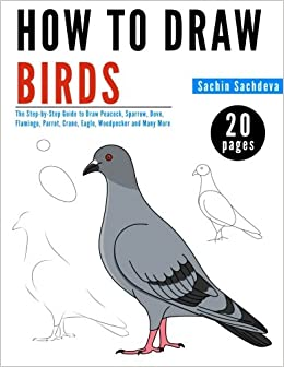 how to draw birds the step by step guide to draw peacock sparrow dove flamingo parrot crane eagle woodpecker and many more sachin sachdeva