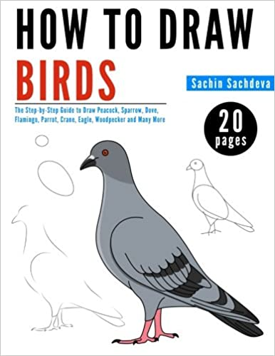 How To Draw Birds The Step By Step Guide To Draw Peacock Sparrow