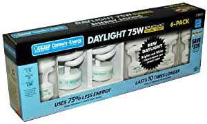 Feit Electric 18 Watt Compact Fluorescent Light Bulb