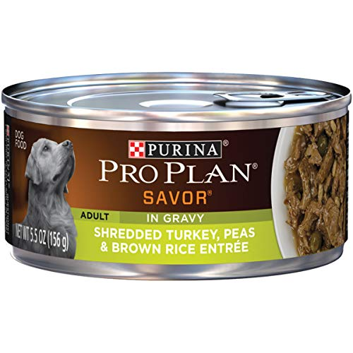 Purina Pro Plan Gravy Wet Dog Food, SAVOR Shredded Turkey, Peas & Brown Rice Entree - (24) 5.5 oz. Cans (Best Tasting Dog Food For Picky Eaters)