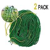 Garden Plant Trellis 2 Pack Netting Heavy Duty Net Support for Cucumber, Vine, Veggie Trellis Net, Climbing Vining Plants (5.9Ft x 5.9Ft)