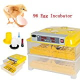 96 Digital Clear Egg Incubator for Chicken eggs Hatcher Automatic Egg Turning Temperature Control