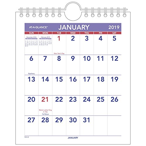 AT-A-GLANCE 2019 Monthly Wall Calendar, 6-1/2 x 7-1/2, Mini (PM528)