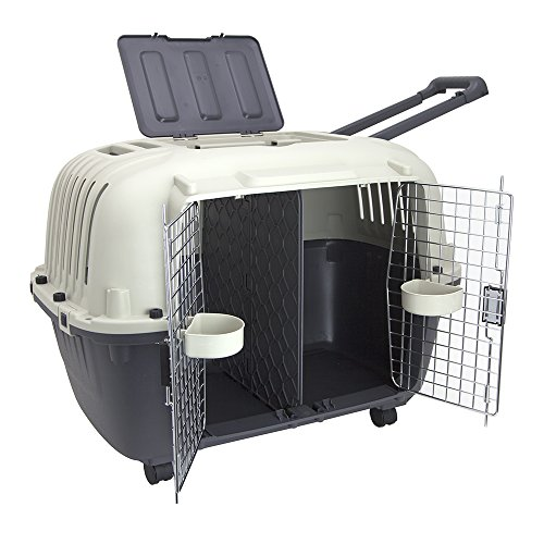 SportPet Designs Double Wire Door Plastic Kennel