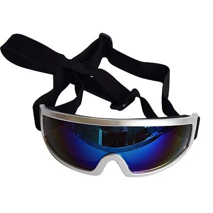 Amazon.com: Gafas de sol transparentes para mascotas con ...