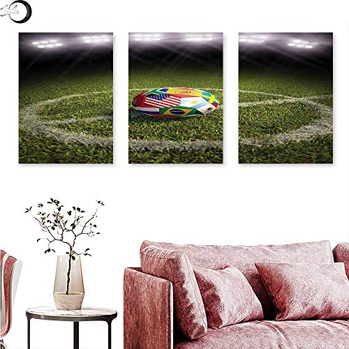 J Chief Sky Sports Canvas Wall Art Soccer Ball on a Field Flags Wall Painting W 24