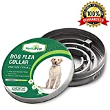 HerbalVet Dog Flea Collar for Flea and Tick Treatment and Prevention for Dogs| One Size Fits All, 100% Natural Oils, 100% Waterproof, 8 Month Essential Oil Flea Collar | Helpful E-Book Included