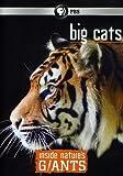 Inside Nature's Giants: Big Cats [DVD] [Region 1] [US Import] [NTSC]