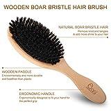 BLACK EGG Boar Bristle Hair Brush with Wooden