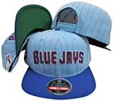 Toronto Blue Jays Pinstripe Two Tone Plastic Snapback Adjustable Plastic Snap Back Hat / Cap