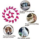 YYYux Cat Nail Caps 120PCS Soft Rubber Pet Paws