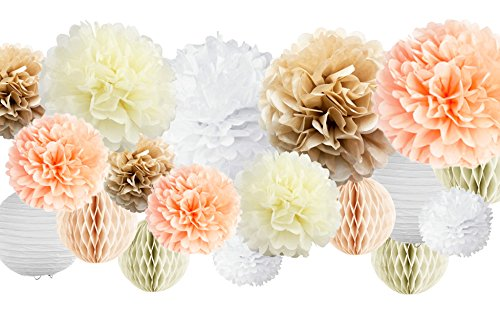 30 Pcs Tissue Paper Pom Poms Kit (14