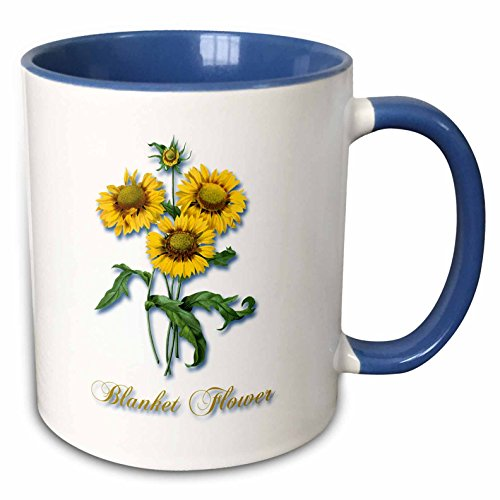 - 3dRose BLN Flowers and Fruits by Pierre Joseph Redoute - Blanket Flower, Botanical Print of Bright Yellow Flowers - 15oz Two-Tone Blue Mug (mug_171168_11)