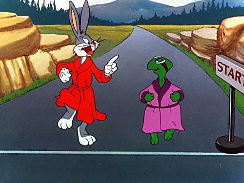 (Rabbit Transit)